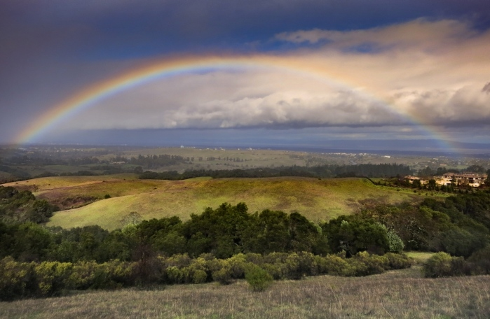 Rainbow over annual grasslands in the Bay Area, CA, taken by Joan Dudley in 2013
