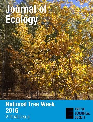jec-nationaltreeweek-resized National Tree Week 2016 – Virtual Issue - #NationalTreeWeek